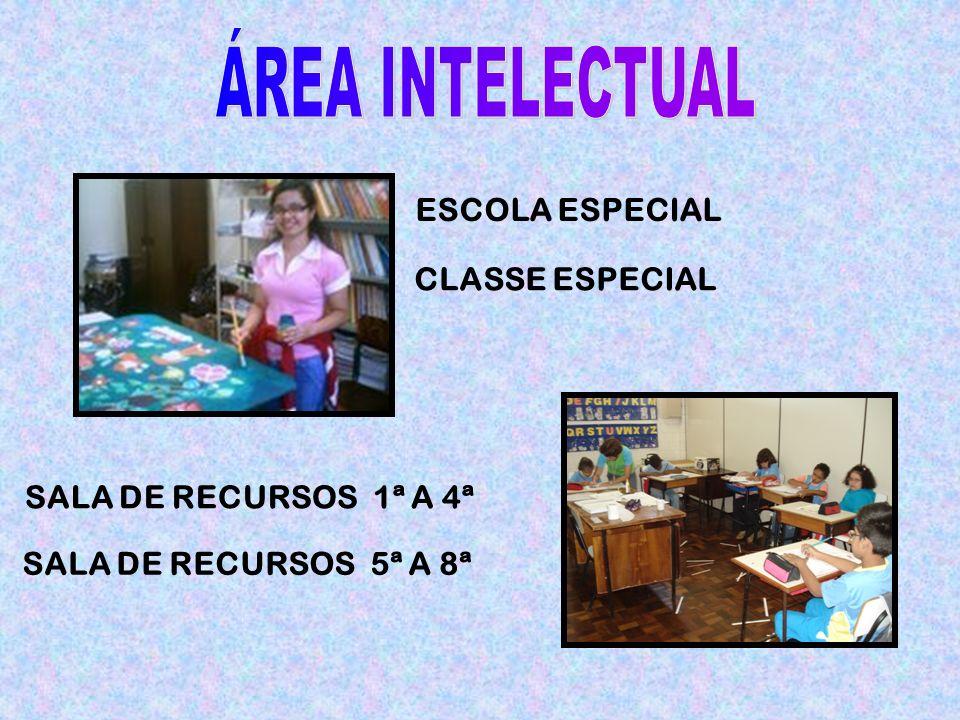 SALA DE RECURSOS 1ª A 4ª SALA DE RECURSOS 5ª A 8ª ESCOLA ESPECIAL CLASSE ESPECIAL