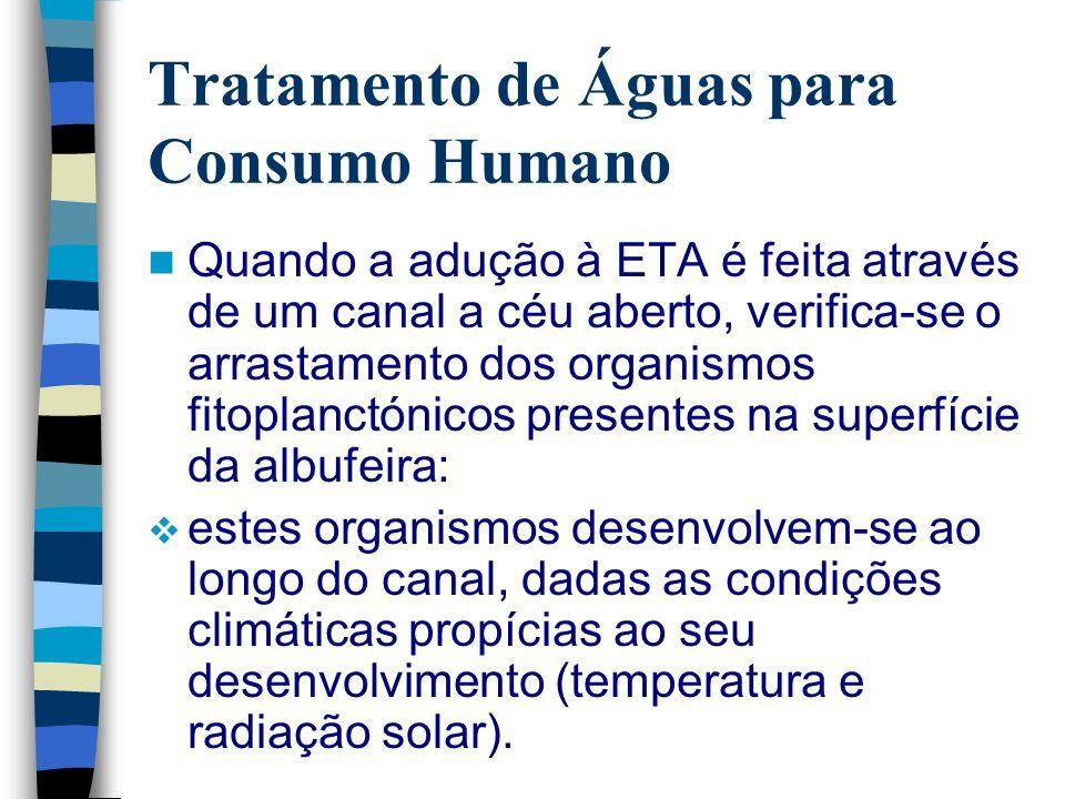 Tratamento de Águas para Consumo Humano Quando a adução à ETA é feita através de um canal a céu aberto, verifica-se o arrastamento dos organismos fito