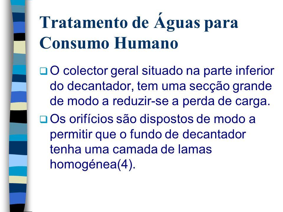 Tratamento de Águas para Consumo Humano O colector geral situado na parte inferior do decantador, tem uma secção grande de modo a reduzir-se a perda d