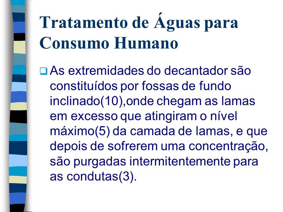Tratamento de Águas para Consumo Humano As extremidades do decantador são constituídos por fossas de fundo inclinado(10),onde chegam as lamas em exces