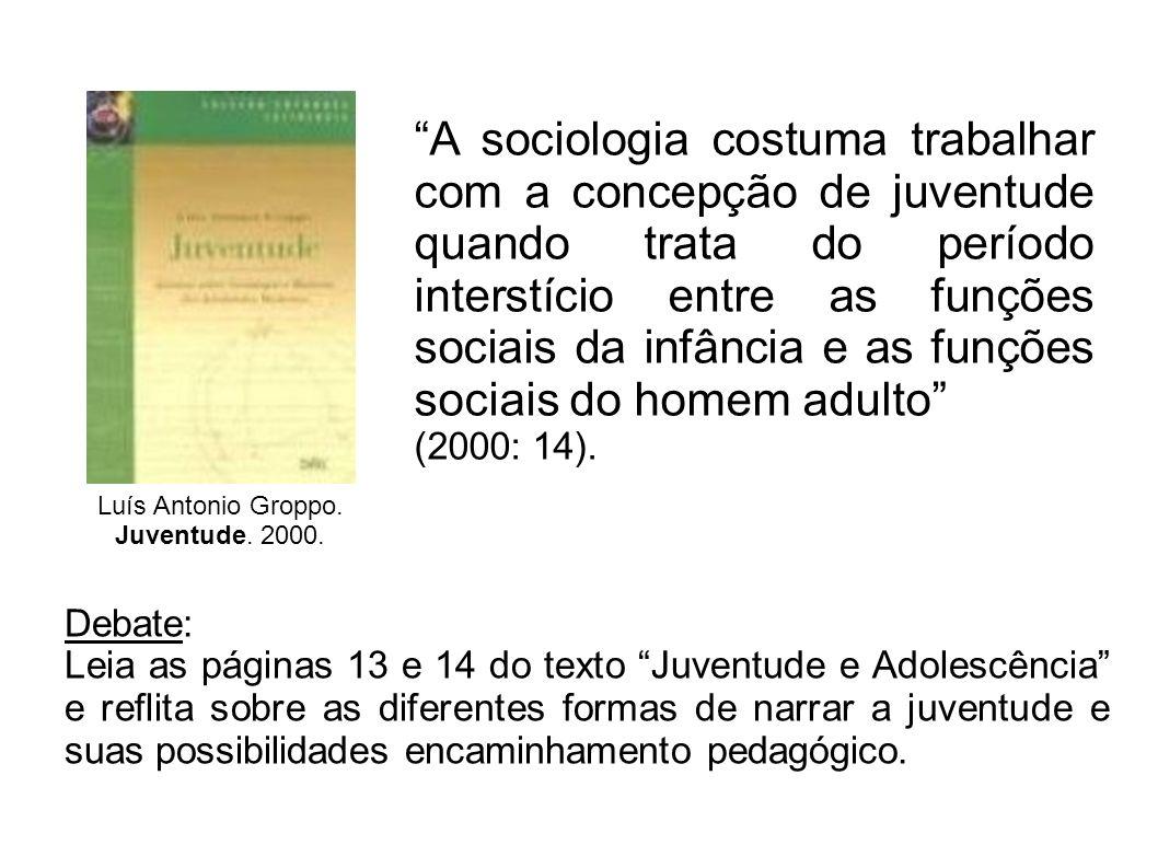 Luís Antonio Groppo. Juventude. 2000. A sociologia costuma trabalhar com a concepção de juventude quando trata do período interstício entre as funções