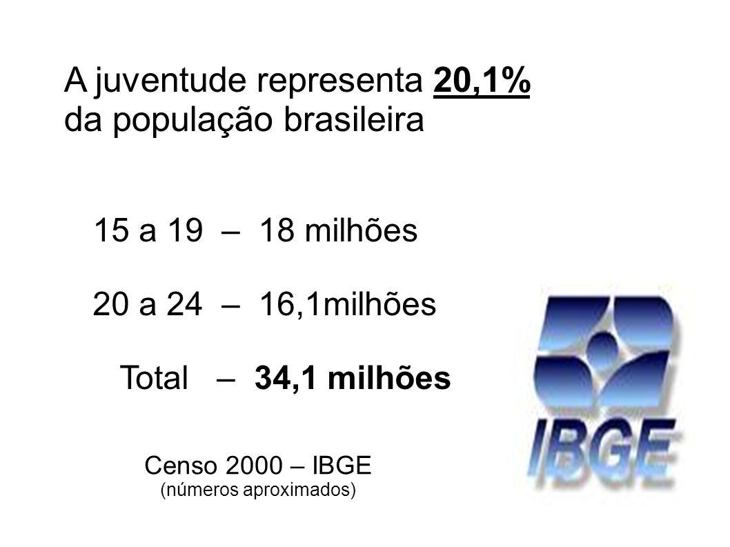 A juventude representa 20,1% da população brasileira Censo 2000 – IBGE (números aproximados) 15 a 19 – 18 milhões 20 a 24 – 16,1milhões Total – 34,1 m