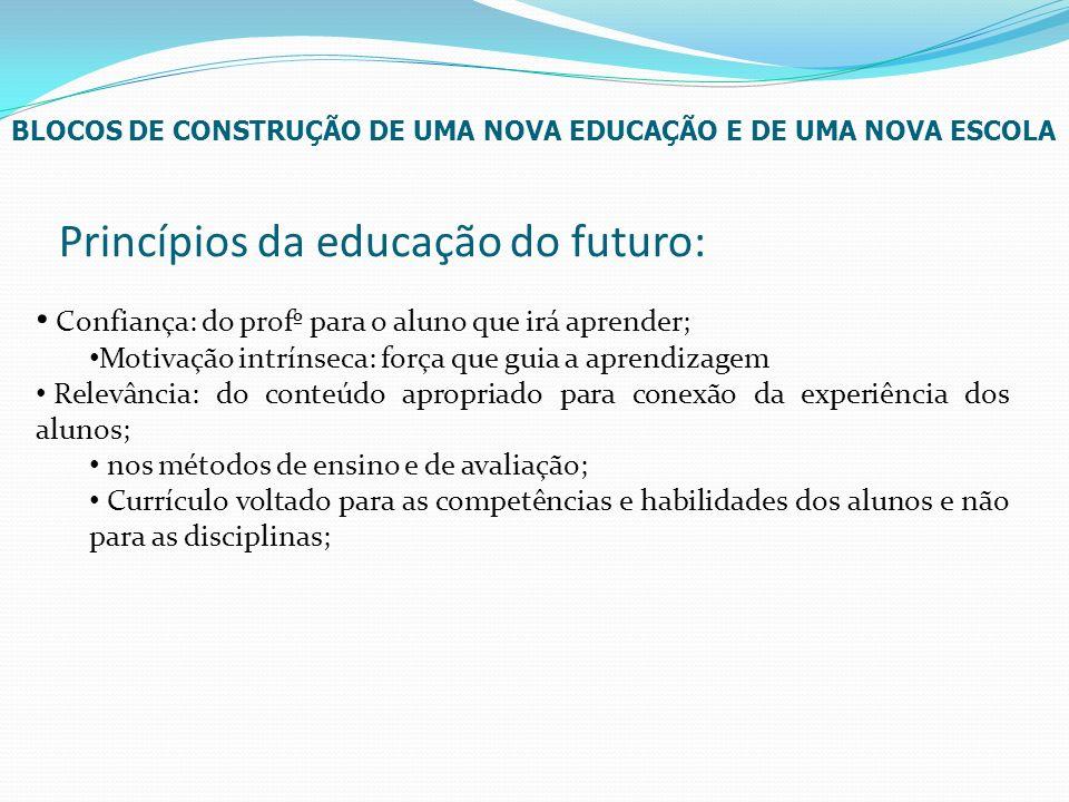 Princípios da educação do futuro: Confiança: do profº para o aluno que irá aprender; Motivação intrínseca: força que guia a aprendizagem Relevância: d
