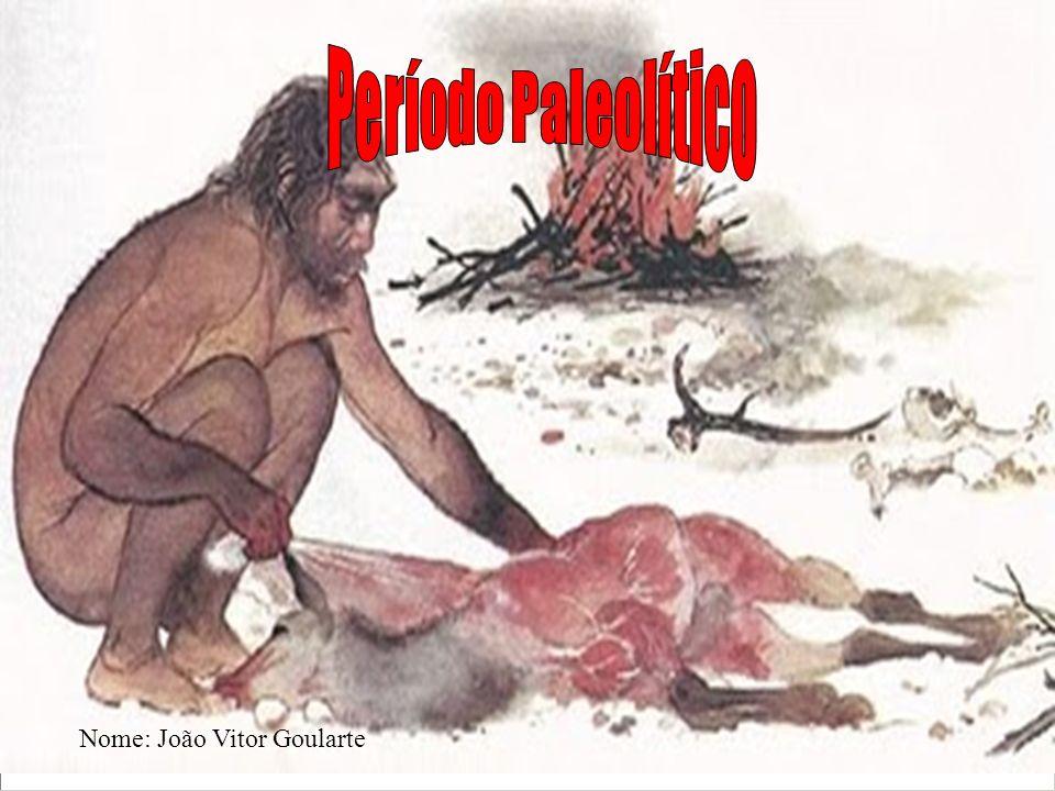 O período paleolítico, teve início quando surgiram os primeiros humanos na Terra.