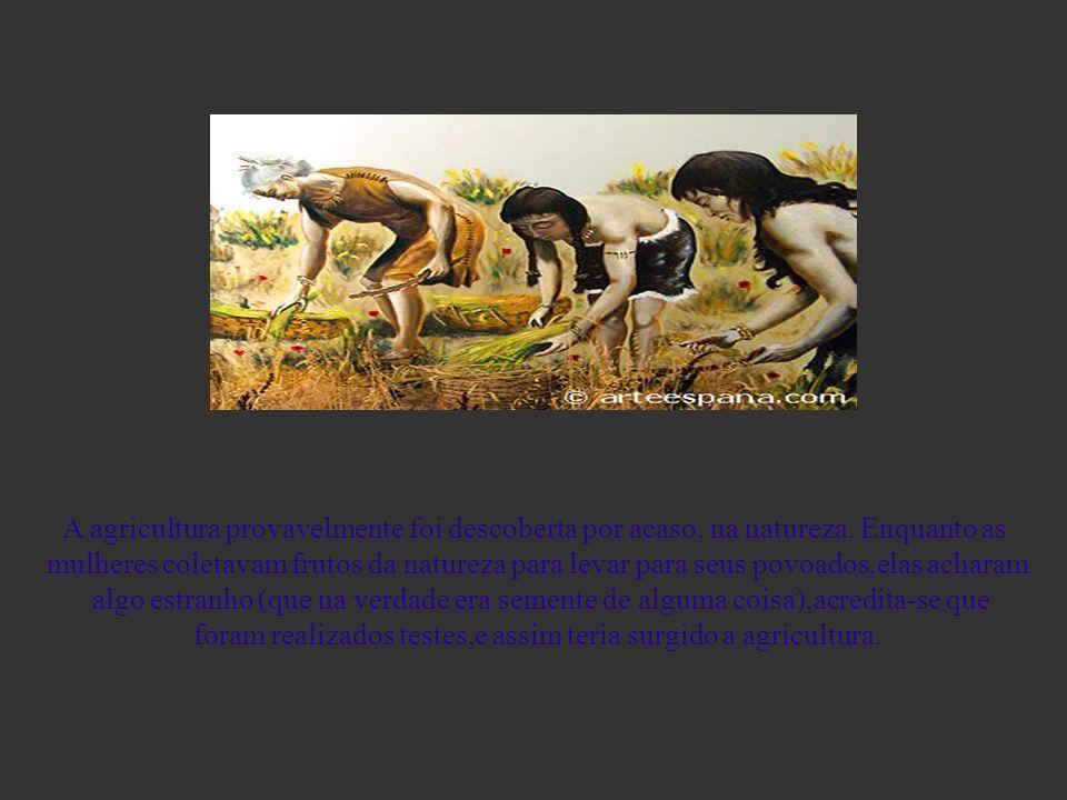 A genial descoberta,da Agricultura A agricultura provavelmente foi descoberta por acaso, na natureza. Enquanto as mulheres coletavam frutos da naturez