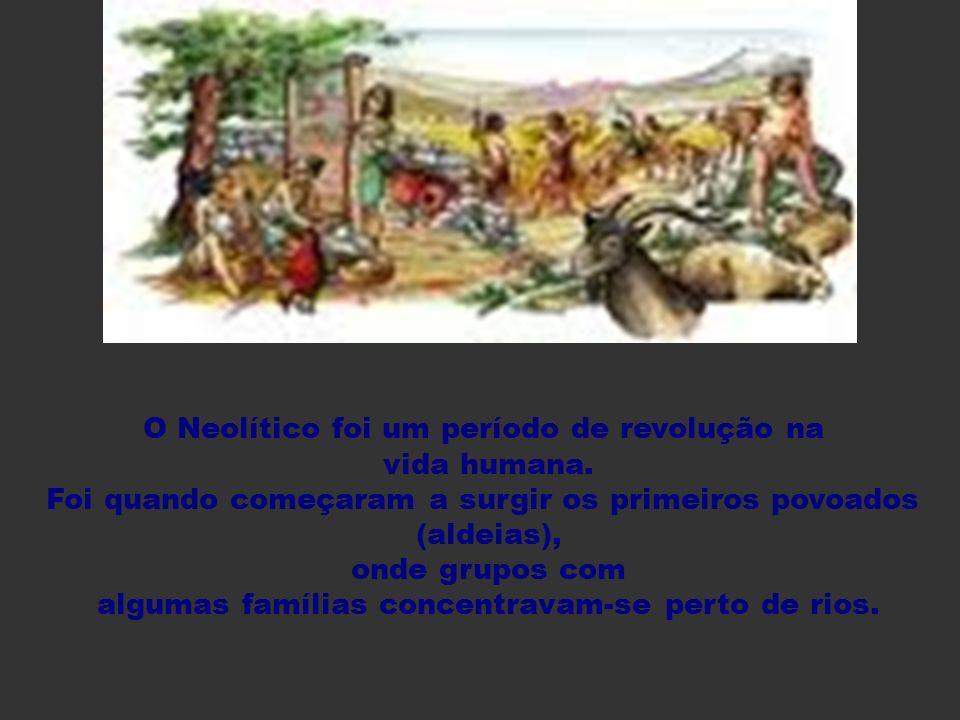 O Neolítico foi um período de revolução na vida humana. Foi quando começaram a surgir os primeiros povoados (aldeias), onde grupos com algumas família