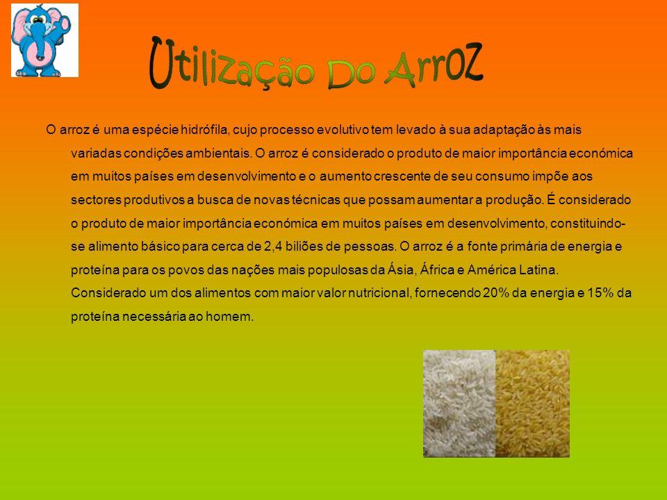 O arroz é uma espécie hidrófila, cujo processo evolutivo tem levado à sua adaptação às mais variadas condições ambientais. O arroz é considerado o pro