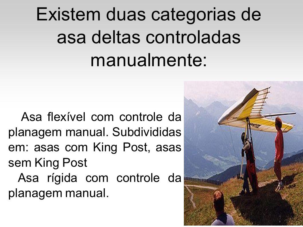 Existem duas categorias de asa deltas controladas manualmente: Asa flexível com controle da planagem manual. Subdivididas em: asas com King Post, asas
