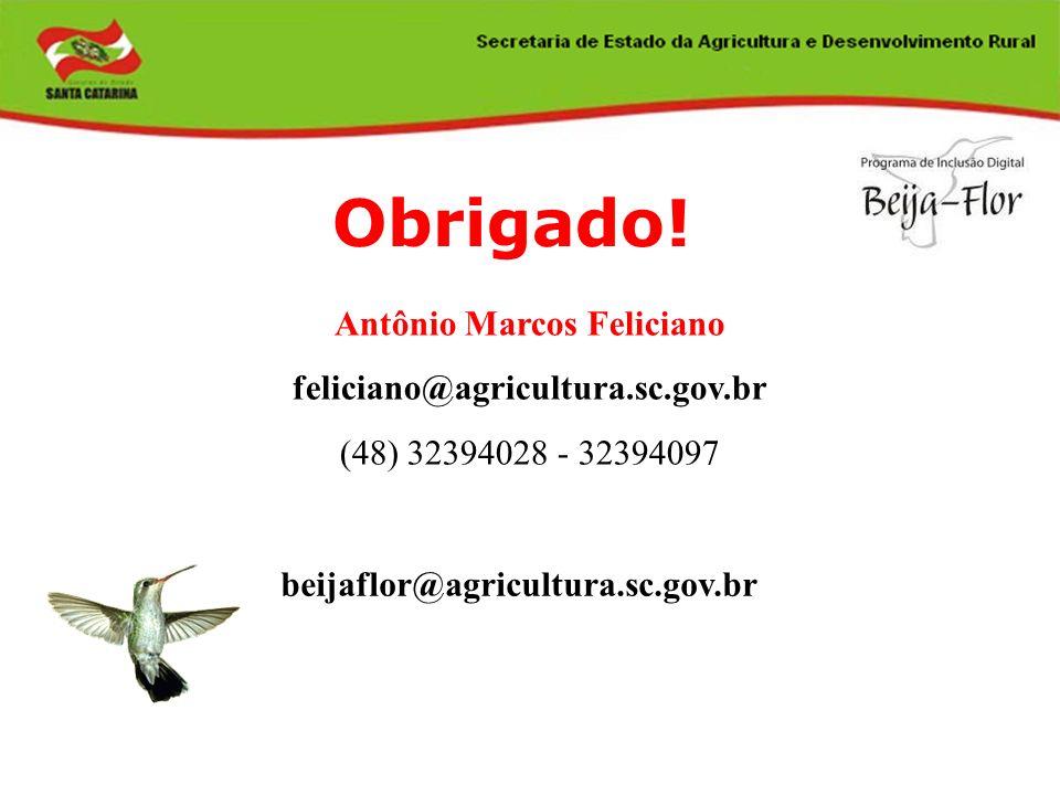 Obrigado! Antônio Marcos Feliciano feliciano@agricultura.sc.gov.br (48) 32394028 - 32394097 beijaflor@agricultura.sc.gov.br