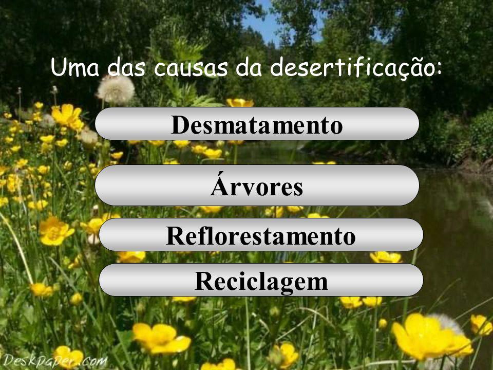 É responsável pela degradação do solo: Chuva Erosão Reflorestamento Reciclagem