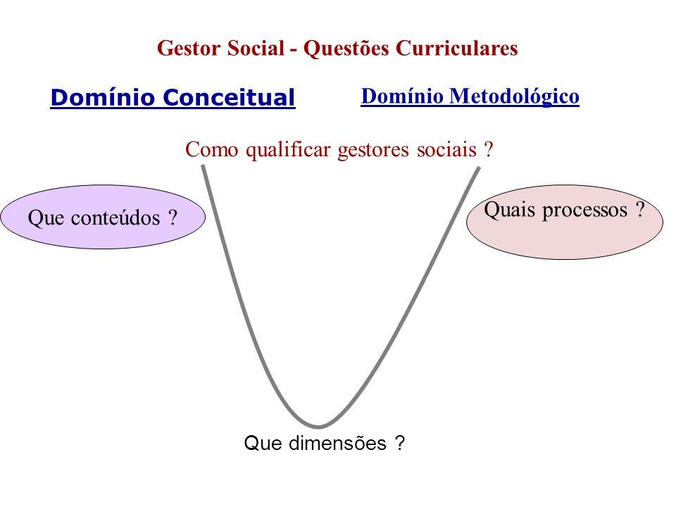 Domínio Conceitual Gestor Social - Questões Curriculares Domínio Metodológico Como qualificar gestores sociais ? Que dimensões ? Que conteúdos ? Quais