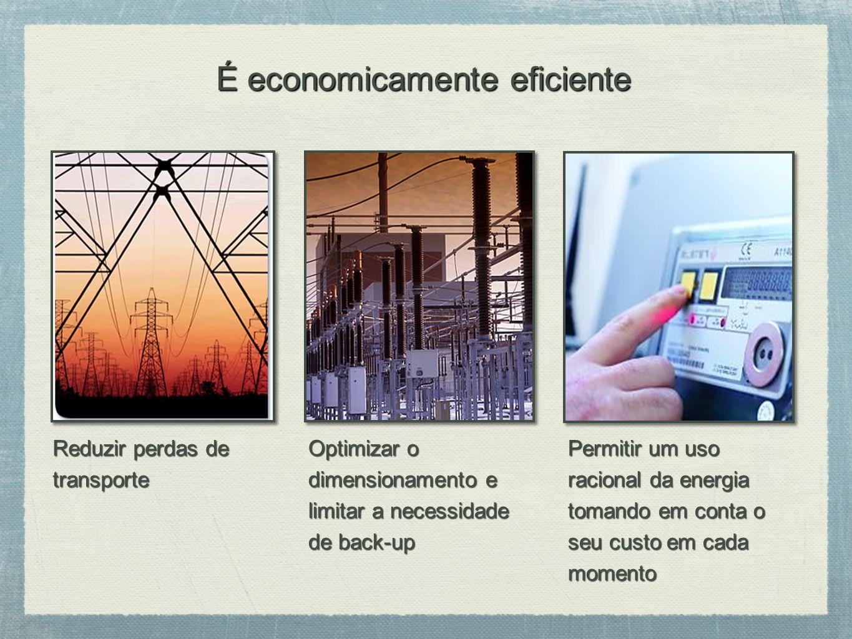 Reduzir perdas de transporte Optimizar o dimensionamento e limitar a necessidade de back-up Permitir um uso racional da energia tomando em conta o seu