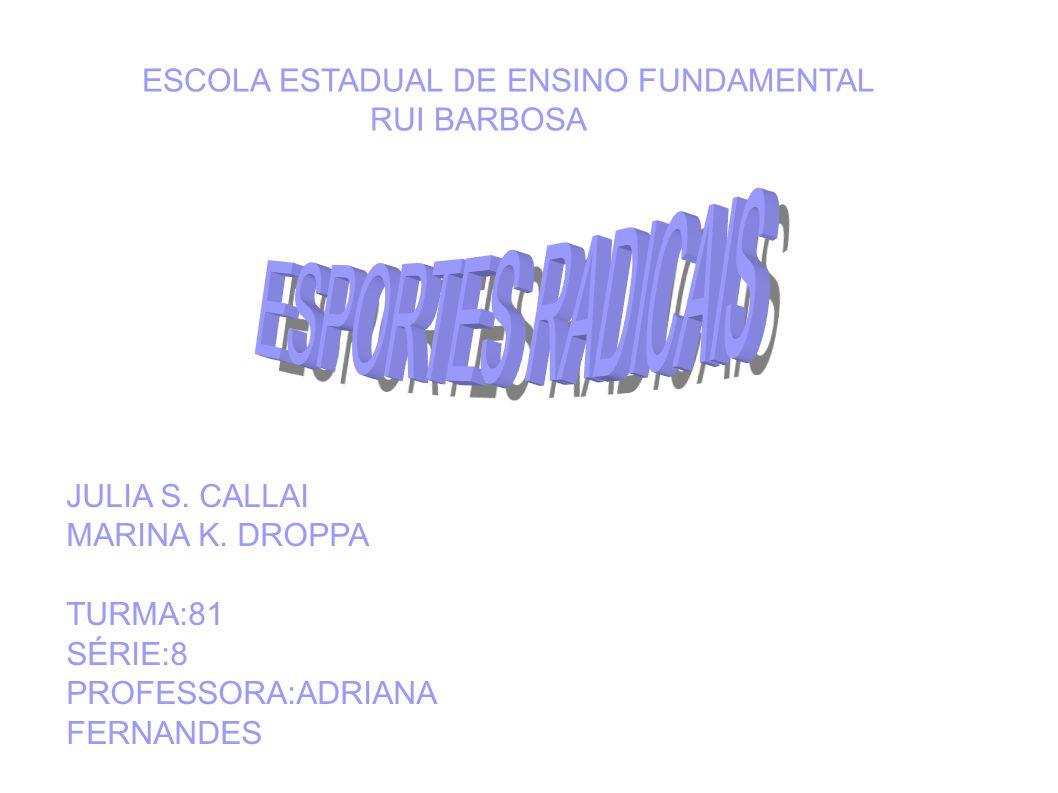 ESCOLA ESTADUAL DE ENSINO FUNDAMENTAL RUI BARBOSA JULIA S. CALLAI MARINA K. DROPPA TURMA:81 SÉRIE:8 PROFESSORA:ADRIANA FERNANDES
