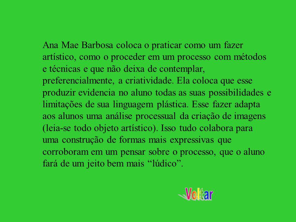 Ana Mae Barbosa coloca o praticar como um fazer artístico, como o proceder em um processo com métodos e técnicas e que não deixa de contemplar, prefer