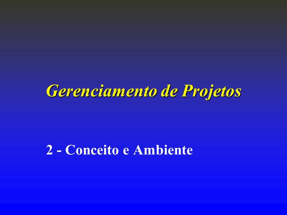 Gerenciamento de Projetos 2 - Conceito e Ambiente