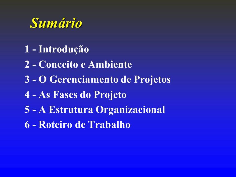 Sumário 1 - Introdução 2 - Conceito e Ambiente 3 - O Gerenciamento de Projetos 4 - As Fases do Projeto 5 - A Estrutura Organizacional 6 - Roteiro de T