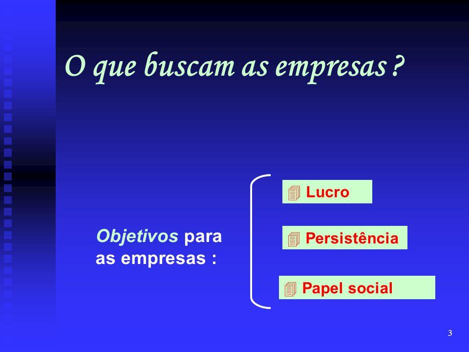 3 Objetivos para as empresas : 4 Lucro 4 Persistência 4 Papel social O que buscam as empresas ?
