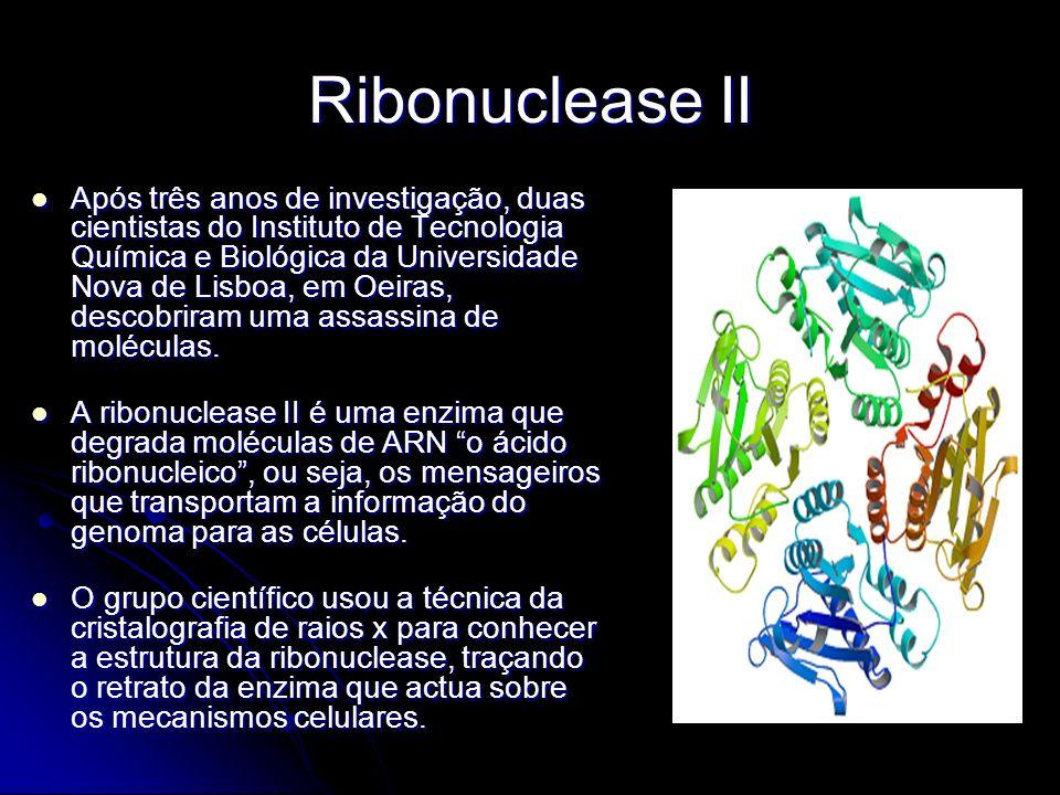 Ribonuclease II Após três anos de investigação, duas cientistas do Instituto de Tecnologia Química e Biológica da Universidade Nova de Lisboa, em Oeir