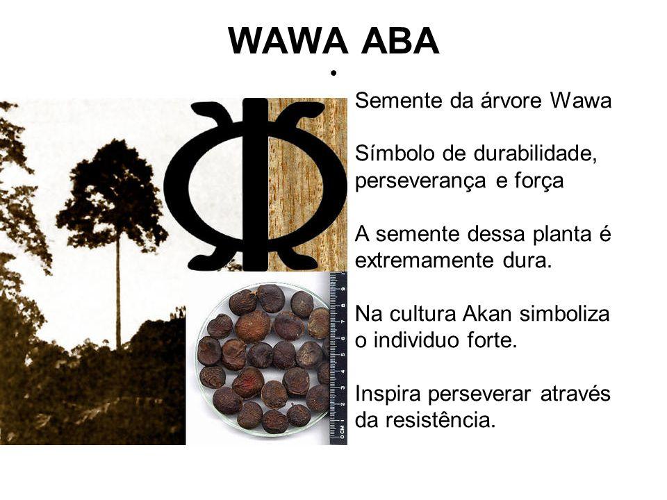 WAWA ABA Semente da árvore Wawa Símbolo de durabilidade, perseverança e força A semente dessa planta é extremamente dura.