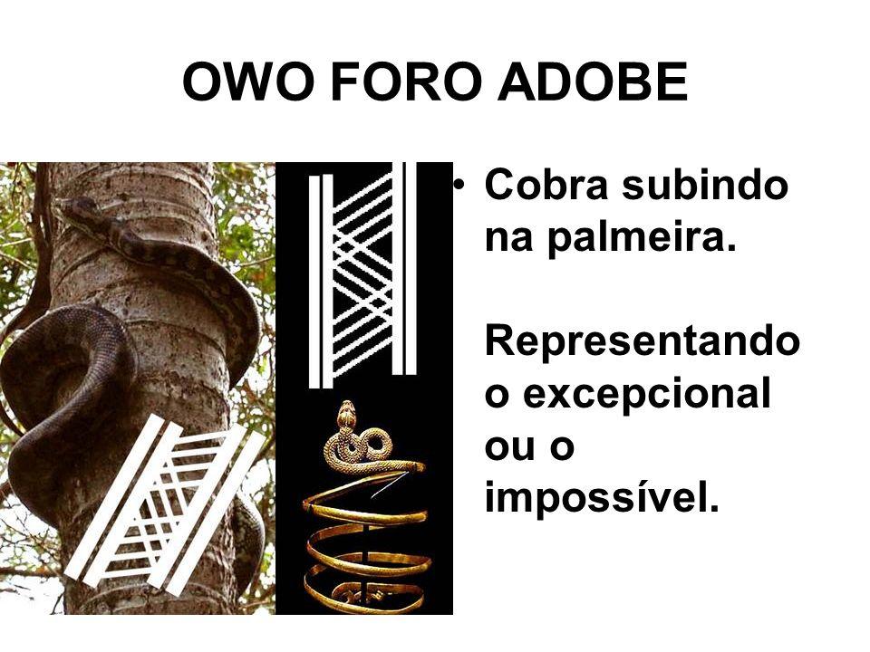 OWO FORO ADOBE Cobra subindo na palmeira. Representando o excepcional ou o impossível.