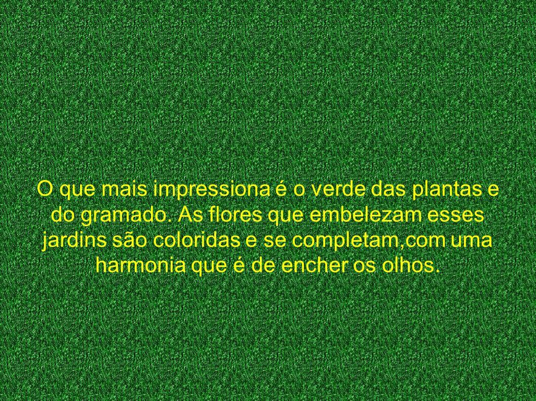 O que mais impressiona é o verde das plantas e do gramado.