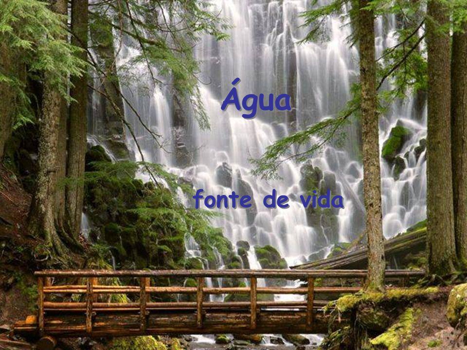 Água fonte de vida