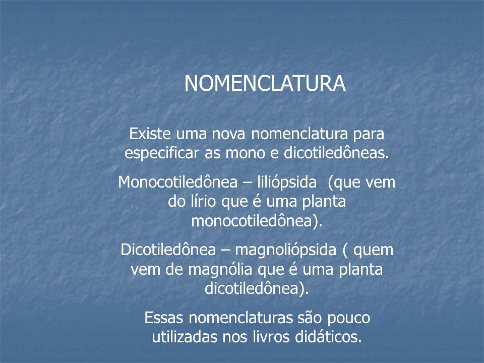 REFERÊNCIA CÉSAR E SEZAR.Biologia – volume único.