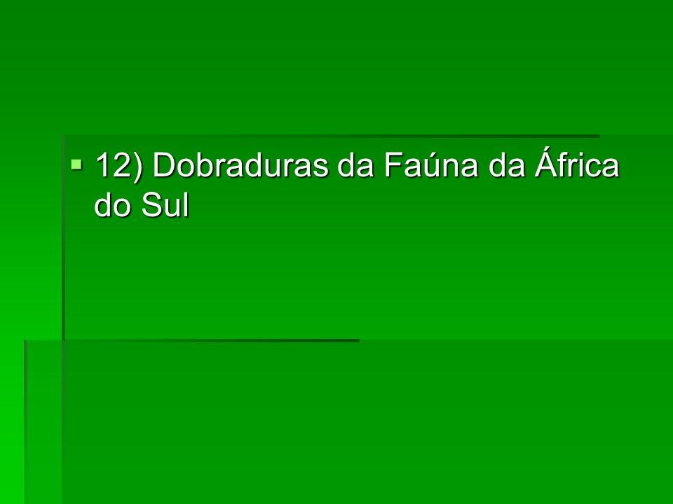 12) Dobraduras da Faúna da África do Sul 12) Dobraduras da Faúna da África do Sul