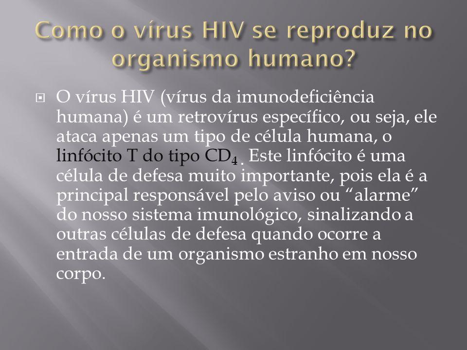 O vírus HIV (vírus da imunodeficiência humana) é um retrovírus específico, ou seja, ele ataca apenas um tipo de célula humana, o linfócito T do tipo C