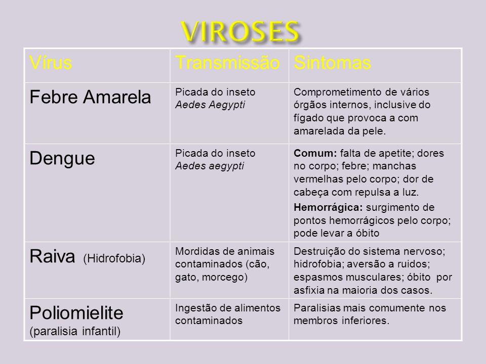 VírusTransmissãoSintomas Febre Amarela Picada do inseto Aedes Aegypti Comprometimento de vários órgãos internos, inclusive do fígado que provoca a com
