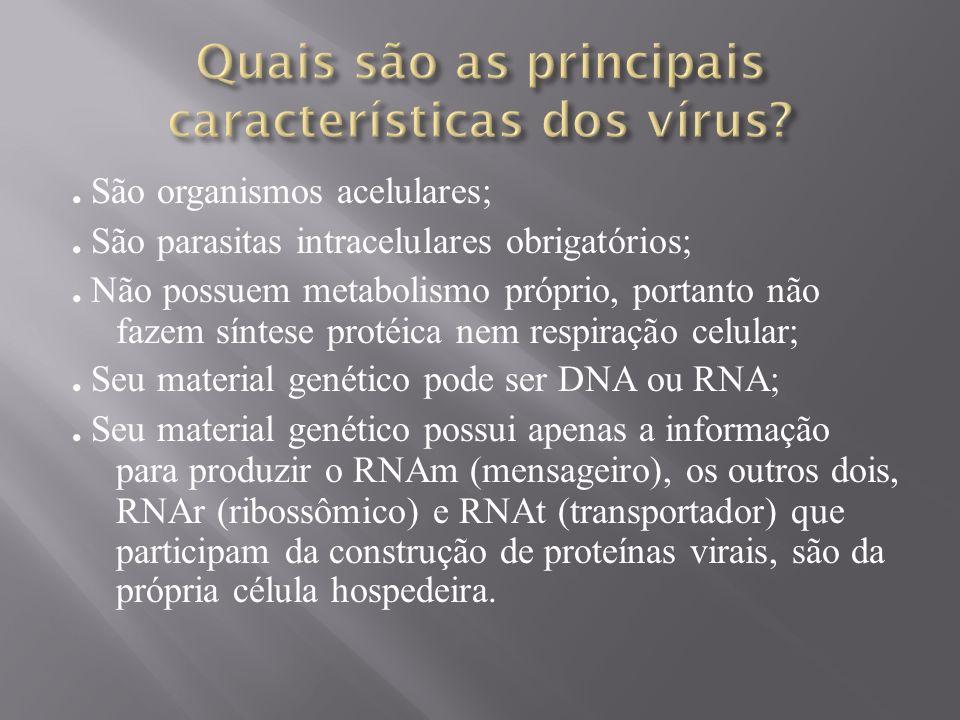 Vírus e Doenças Associadas 9) Principais VirosesSarampo Vírus do sarampo Vírus Capsulado