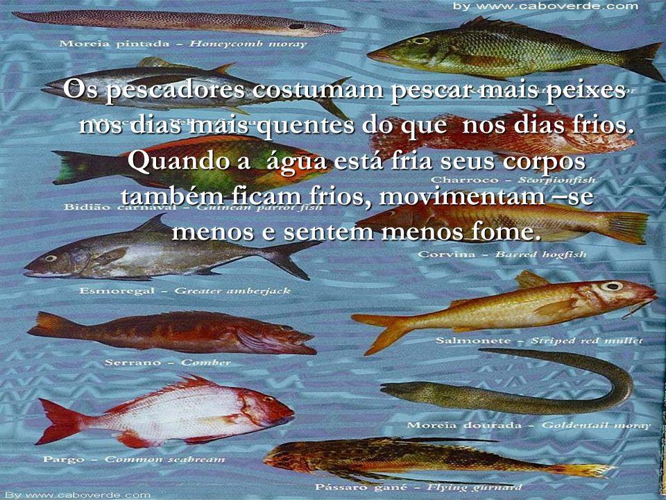 Os peixes têm escamas ou couro liso.Os peixes vivem no mar, no rios ou até nos lagos.