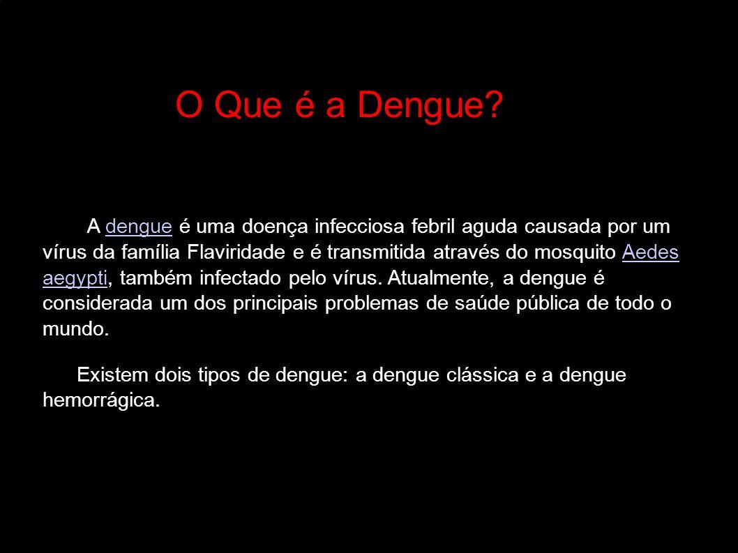 O Que é a Dengue? A dengue é uma doença infecciosa febril aguda causada por um vírus da família Flaviridade e é transmitida através do mosquito Aedes