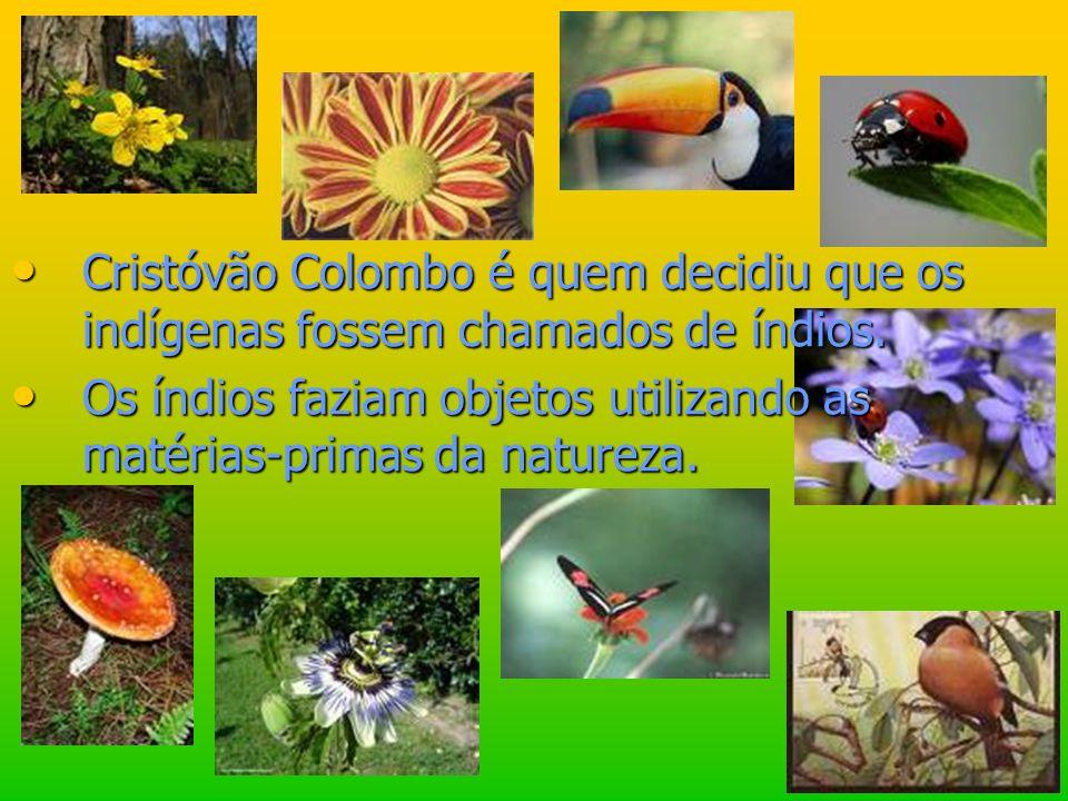 Cristóvão Colombo é quem decidiu que os indígenas fossem chamados de índios. Os índios faziam objetos utilizando as matérias-primas da natureza.