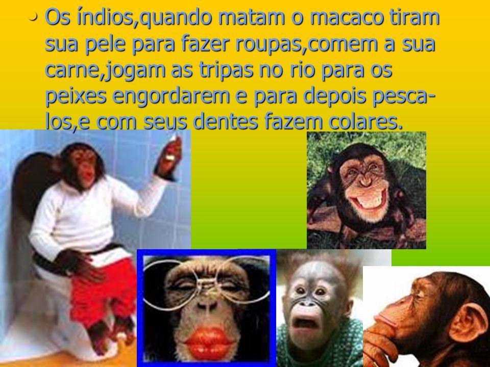 Os índios,quando matam o macaco tiram sua pele para fazer roupas,comem a sua carne,jogam as tripas no rio para os peixes engordarem e para depois pesc