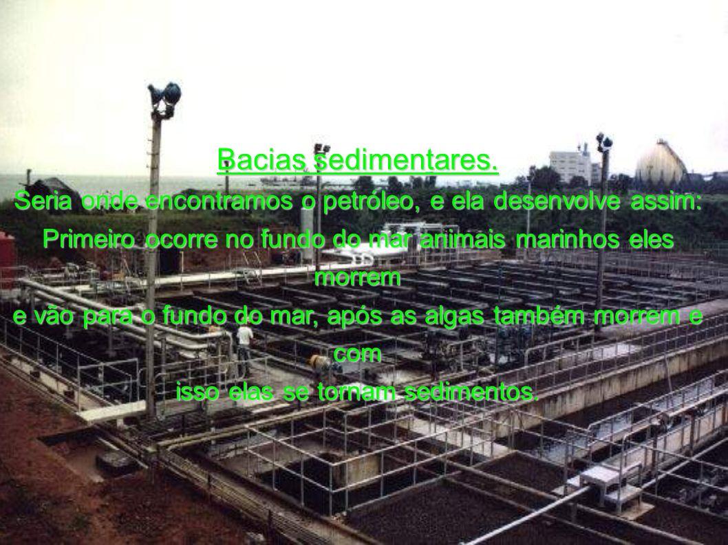 A Petrobrás. Foi criada em 1954 com objetivo de monopolizar a exploração do petróleo no Brasil. A partir dai muitos poços foram perfumados. Atualmente