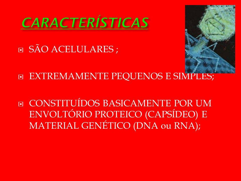 SÃO ACELULARES ; EXTREMAMENTE PEQUENOS E SIMPLES; CONSTITUÍDOS BASICAMENTE POR UM ENVOLTÓRIO PROTEICO (CAPSÍDEO) E MATERIAL GENÉTICO (DNA ou RNA);