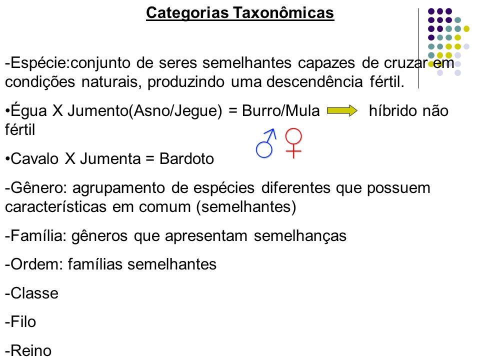 Categorias Taxonômicas -Espécie:conjunto de seres semelhantes capazes de cruzar em condições naturais, produzindo uma descendência fértil.