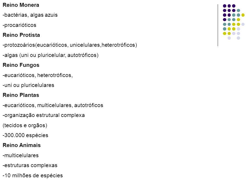 Reino Monera -bactérias, algas azuis -procarióticos Reino Protista -protozoários(eucarióticos, unicelulares,heterotróficos) -algas (uni ou pluricelular, autotróficos) Reino Fungos -eucarióticos, heterotróficos, -uni ou pluricelulares Reino Plantas -eucarióticos, multicelulares, autotróficos -organização estrutural complexa (tecidos e orgãos) -300.000 espécies Reino Animais -multicelulares -estruturas complexas -10 milhões de espécies