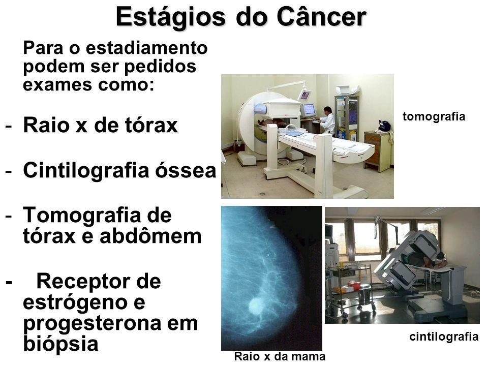 Estágios do Câncer Para o estadiamento podem ser pedidos exames como: -Raio x de tórax -Cintilografia óssea -Tomografia de tórax e abdômem - Receptor