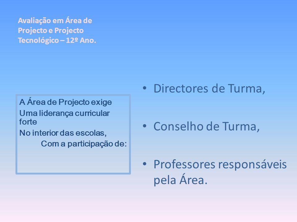 Directores de Turma, Conselho de Turma, Professores responsáveis pela Área. A Área de Projecto exige Uma liderança curricular forte No interior das es