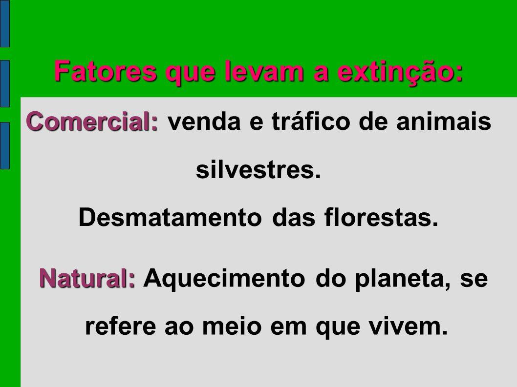 Fatores que levam a extinção: Comercial: Comercial: venda e tráfico de animais silvestres. Desmatamento das florestas. Natural: Natural: Aquecimento d