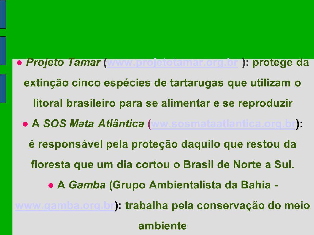 Projeto Tamar (www.projetotamar.org.br ): protege da extinção cinco espécies de tartarugas que utilizam o litoral brasileiro para se alimentar e se re
