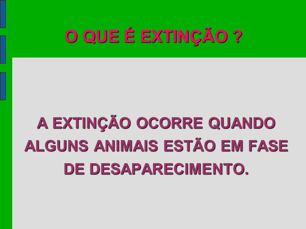 O QUE É EXTINÇÃO ? A EXTINÇÃO OCORRE QUANDO ALGUNS ANIMAIS ESTÃO EM FASE DE DESAPARECIMENTO.