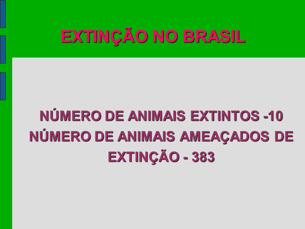 EXTINÇÃO NO BRASIL NÚMERO DE ANIMAIS EXTINTOS -10 NÚMERO DE ANIMAIS AMEAÇADOS DE EXTINÇÃO - 383