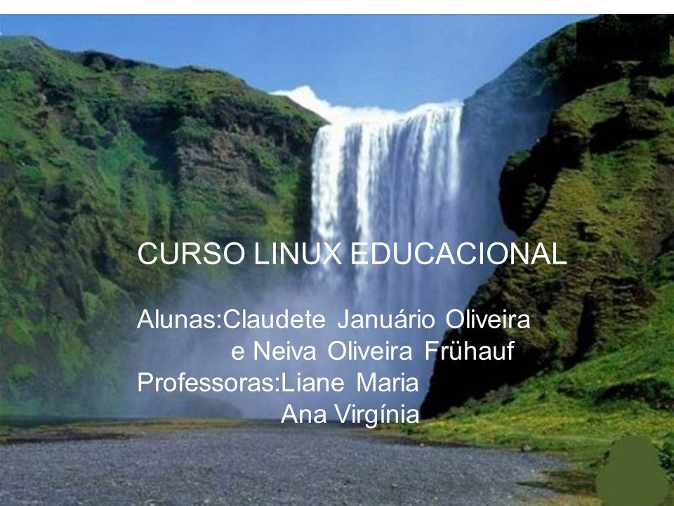 CURSO LINUX EDUCACIONAL Alunas:Claudete Januário Oliveira e Neiva Oliveira Frühauf Professoras:Liane Maria Ana Virgínia