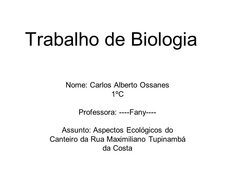 Trabalho de Biologia Nome: Carlos Alberto Ossanes 1ºC Professora: ----Fany---- Assunto: Aspectos Ecológicos do Canteiro da Rua Maximiliano Tupinambá d