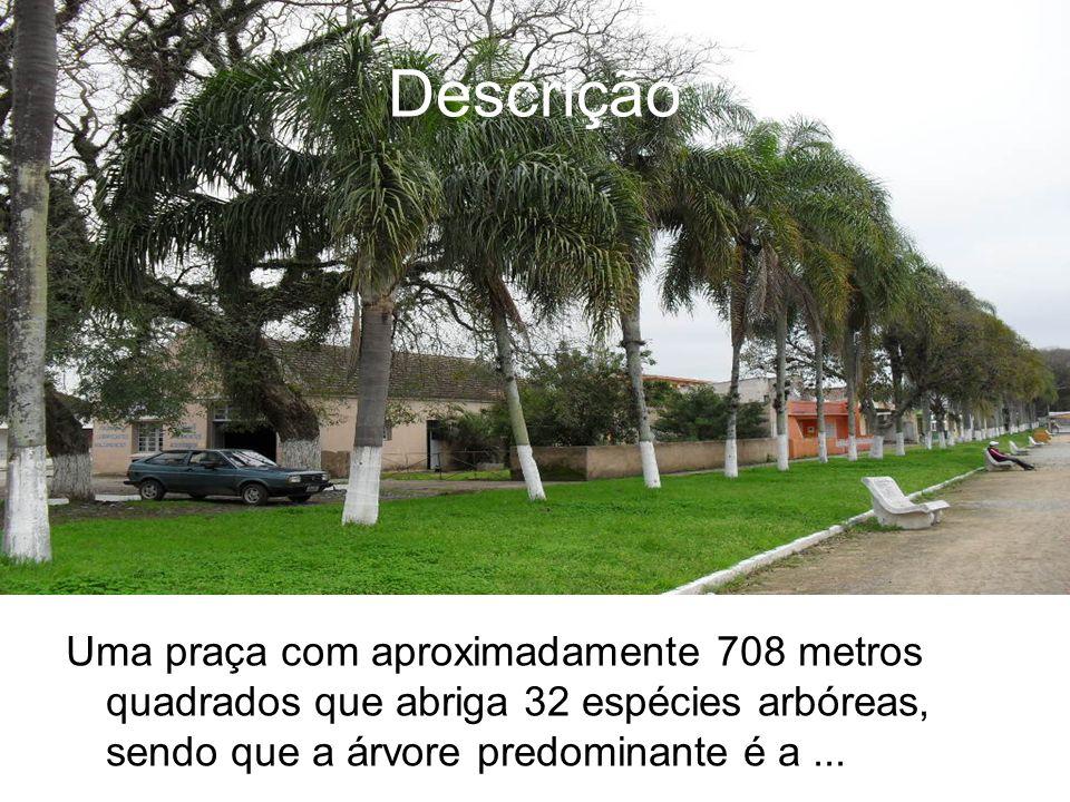 Uma praça com aproximadamente 708 metros quadrados que abriga 32 espécies arbóreas, sendo que a árvore predominante é a... Descrição