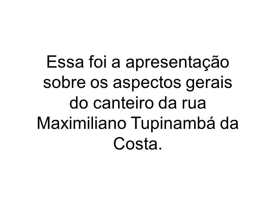 Essa foi a apresentação sobre os aspectos gerais do canteiro da rua Maximiliano Tupinambá da Costa.