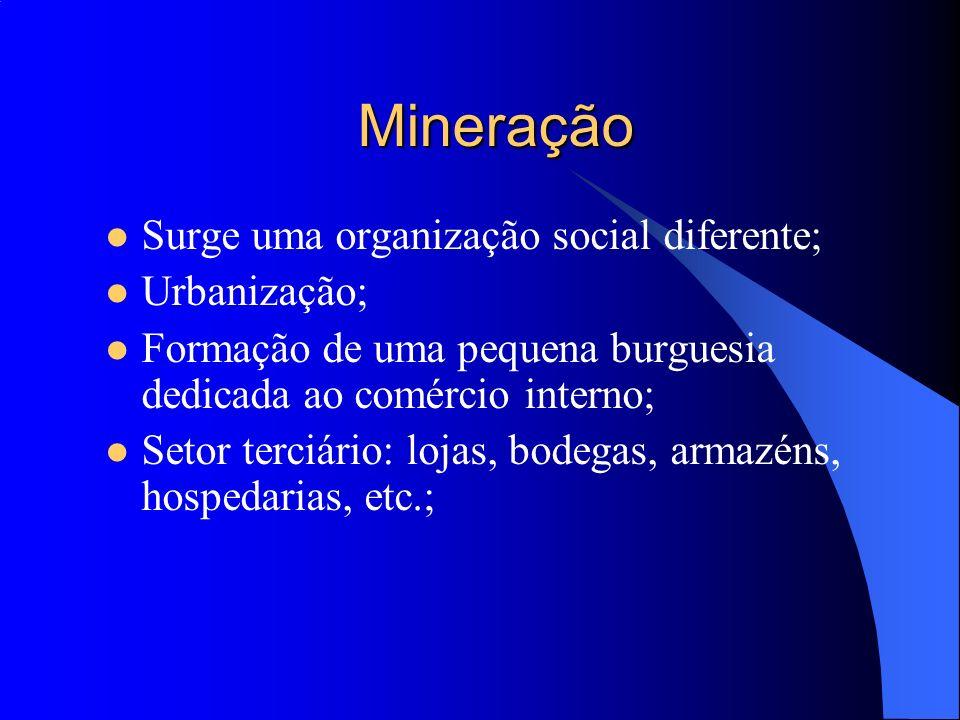 Mineração Surge uma organização social diferente; Urbanização; Formação de uma pequena burguesia dedicada ao comércio interno; Setor terciário: lojas,